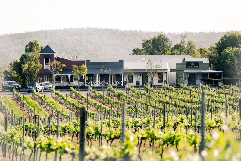 Dusty Hill Vineyard Wedding Photography 02