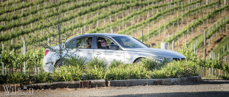 Dusty Hill Vineyard Wedding Photography 17