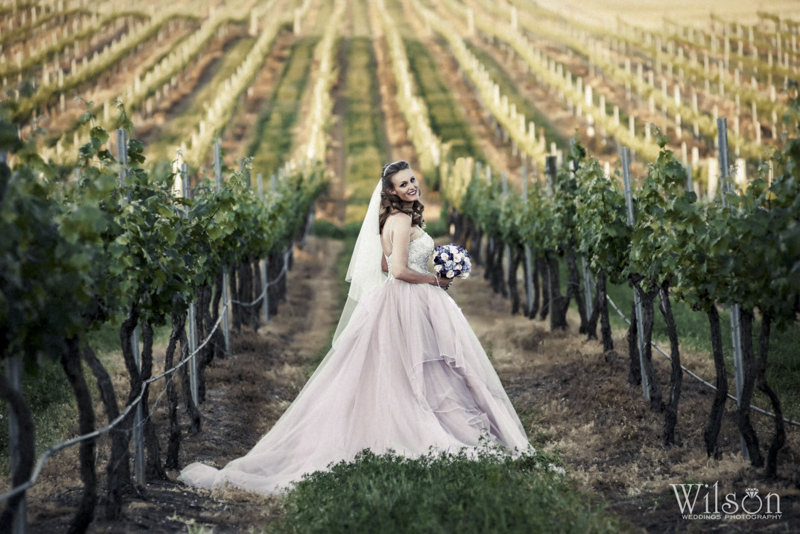 Dusty Hill Vineyard Wedding Photography 25